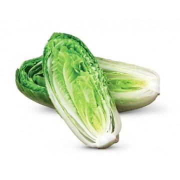 Salade romaine 600g